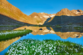 Mountain lake with cottongrass at Maerjelensee - Europe, Switzerland, Valais, Fiesch, Märjelensee (Alps, Valais Alps) - digital