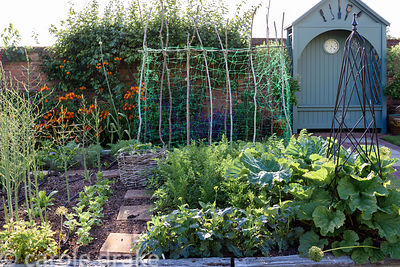 Kitchen garden with raised beds edged with weathered railways sleepers containing asparagas, carrots and poles for climbing b...