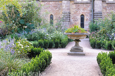 Stone urn planted with succulents at the centre of the parterre in the East Garden made with upright Euonymus 'Green Spire'