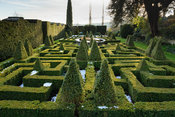 Rectilinear knot garden of clipped box with variegated box pyramids and a central basket pond from the 1851 Great Exhibition,...