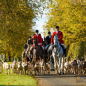 The Cottesmore Hunt Opening Meet 29/10