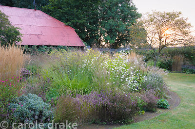 Circular bed planted with a mix of grasses and herbaceous perennials and bulbs including Allium carinatum subsp. pulchellum, ...