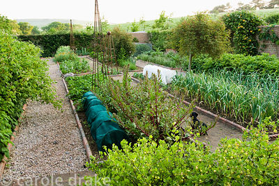 Walled kitchen garden with gravel paths, Victorian style 'rope' edging to the beds and metal obelisks. Old Rectory, Kingston,...