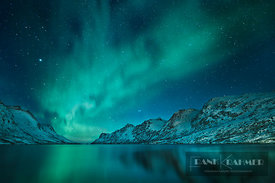 Polar light (Aurora Borealis) at Ersfjordbotn - Europe, Norway, Troms, Kvaloya, Ersfjordbotn (Lapland) - digital