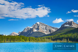 Mountain landscape at Waterfowl Lake - North America, Canada, Alberta, Banff National Park, Waterfowl Lake (Rocky Mountains) ...