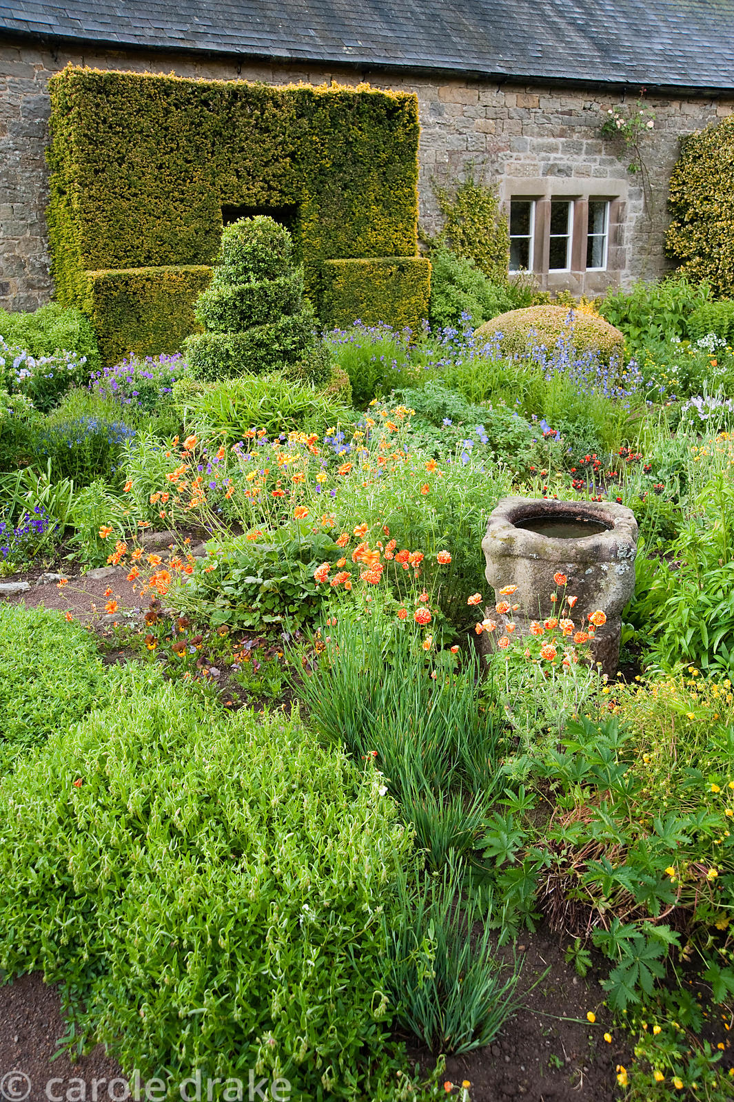 The Flower Garden features strong blocks of box and yew that frame cottage garden plants and flowers, here including poppies,...