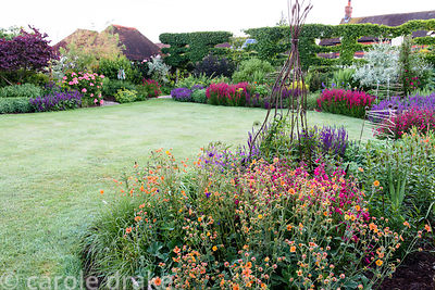 Densely packed borders including Geum 'Totally Tangerine', Salvia verticillata 'Purple Rain', Penstemon 'Garnet'  and Salvia ...