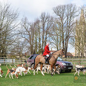 The Cottesmore Hunt at Empingham 5/3