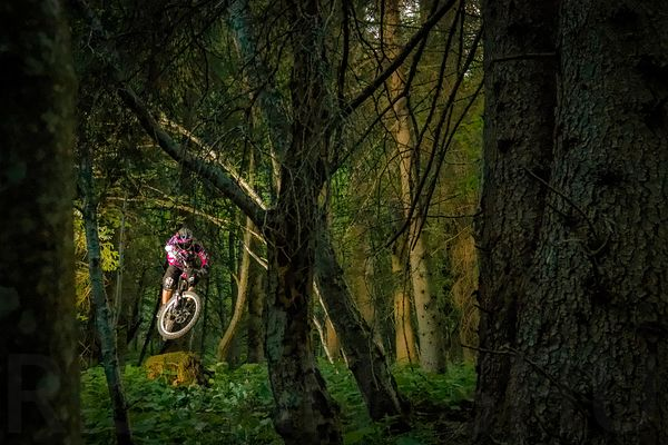 In the Woods with Tristan Ambid