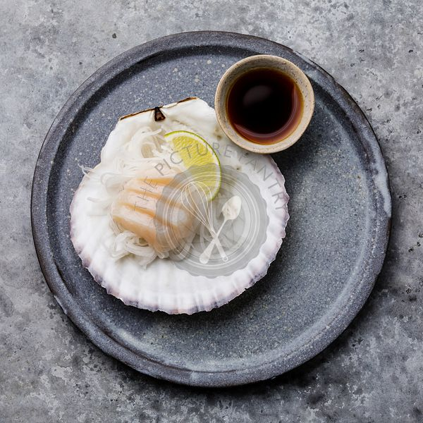 Live scallop sashimi on shell with daikon, lime and soy sauce on gray background
