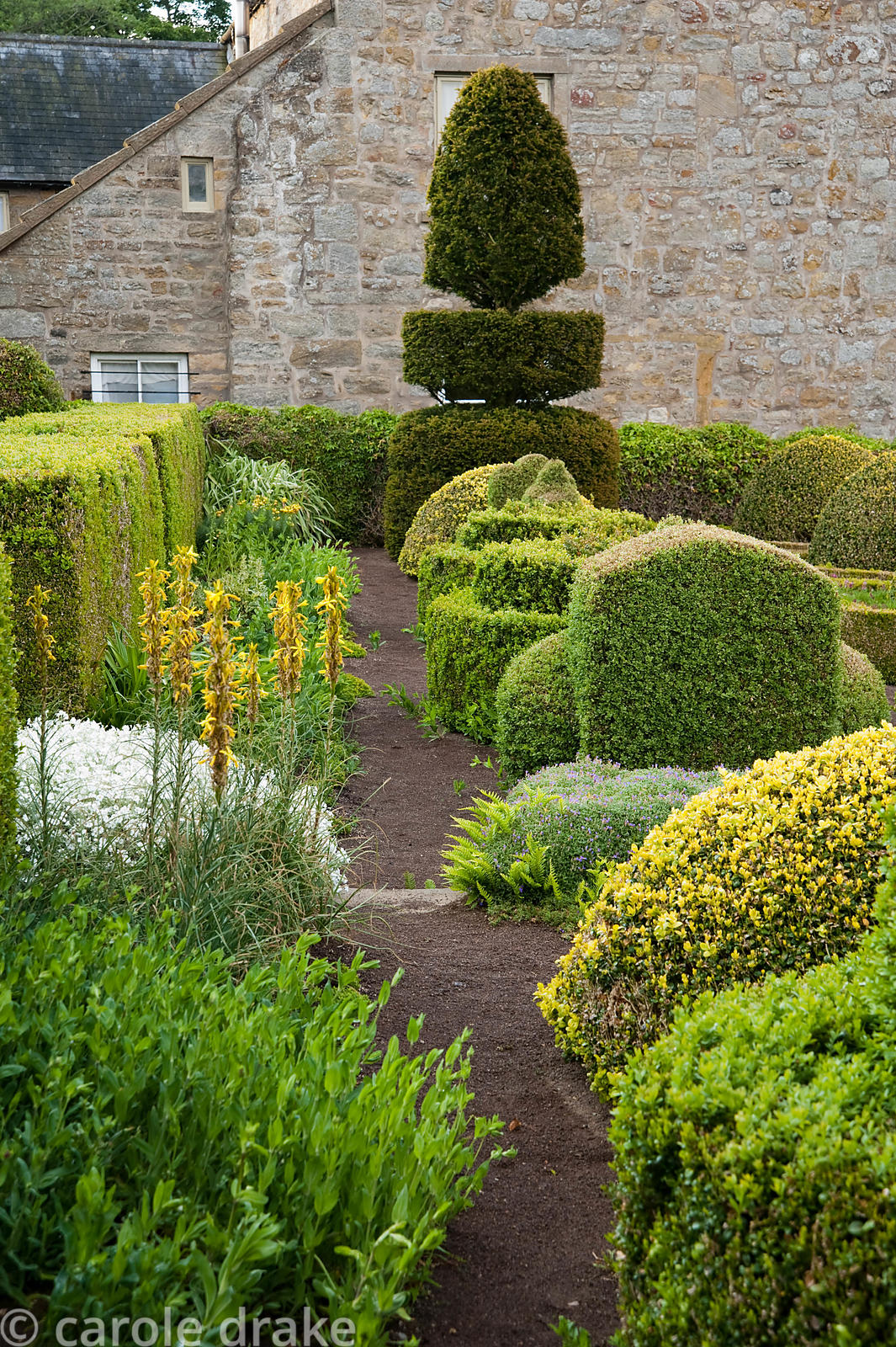 The Formal Garden at the front of the house features box and yew topiary with yellow spikes of Asphodeline lutea. Herterton H...