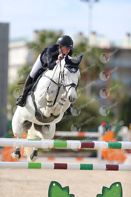Oliva, Spain - 2019 November 17: Gold tour 1m40 during CSI Mediterranean Equestrian Autumn Tour 2.(photo: 1clicphoto)