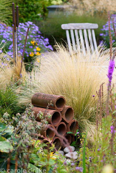 Clay drainage pipes amongst Stipa tenuissima and asters in a garden in rural Nottinghamshire in September