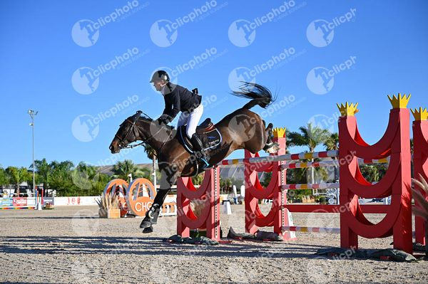 Oliva, Spain - 2020 December 6: CSI2, Gold tour, 1m45, Grand Prix during CSI Mediterranean Equestrian Autumn Tour 3.(photo: 1...