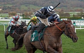 4:05	The High Sheriff of Gloucestershire Standard Open National Hunt Flat Race (Listed)