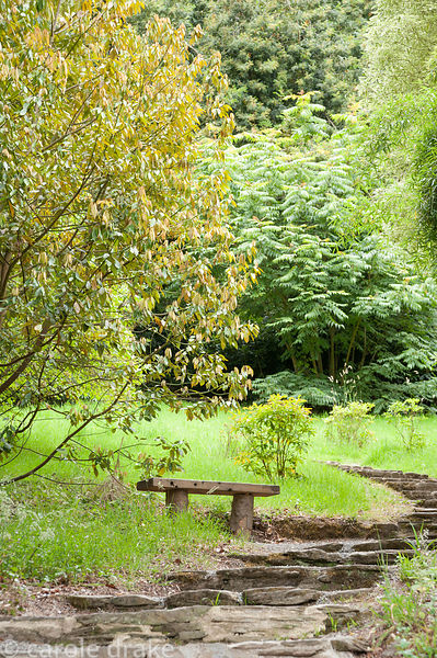 Bench on edge of path up the valley. Coleton Fishacre, Kingswear, Devon, UK