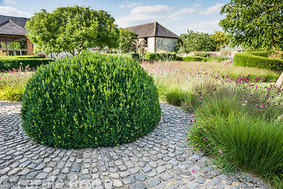 The Courtyard Garden designed by Piet Oudolf and John Coke features a dome of clipped box surrounded by a bed of grasses mixe...