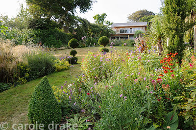 Looking back up the sloping garden across a flower filled border past a pair of tiered topiary yews towards the house. Planti...