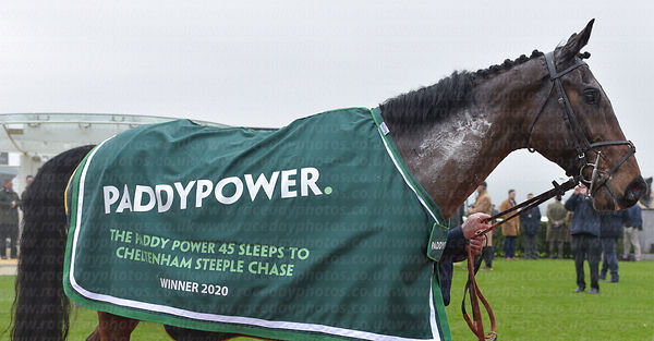 Paddy_Power_Rug_Shot_25012020-3