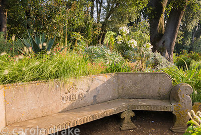 Stone seat at head of Victorian lily ponds with agapanthus, decorative grasses and succulents behind. Abbotsbury Subtropical ...