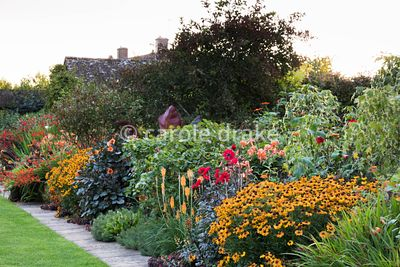 The Warm Border at Bourton House, Moreton-in-Marsh in August including Helenium 'Sahin's Early Flowerer', Dahlia 'Bishop of L...