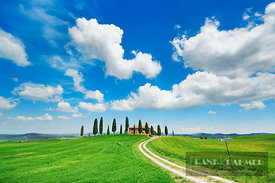 Farm house with cypresses - Europe, Italy, Tuscany, Siena, Val d'Orcia, Pienza - digital - Getty image 520955340