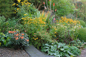 Colourful autumnn border featuring Alstroemeria 'Indian Summer', rudbeckias, potentilla, Phlomis russeliana and a metal and g...