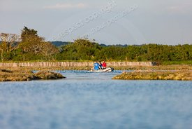 Newtown Creek, Isle of Wight,