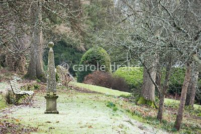 Stone obelisk on the terrace through the sloping orchard at the Old Rectory, Netherbury in January