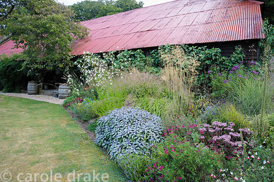 Border below a vivid red tin roof planted with Salvia officinalis 'Purpurascens', Sedum telephium 'Matrona' and salvias inclu...