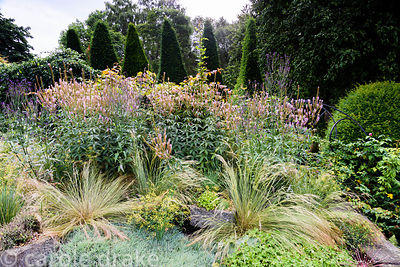 The paved garden planted with grasses, tall veronicastrum, Verbena hastata and geraniums at York Gate, Adel in July