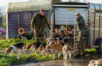 Pytchley hounds at the meet at Horseleys Farm