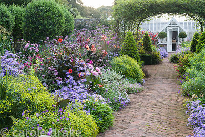 Central brick path in the walled garden is framed by asters, dahlias, euphorbia, Verbena bonariensis and clipped bay pyramids...