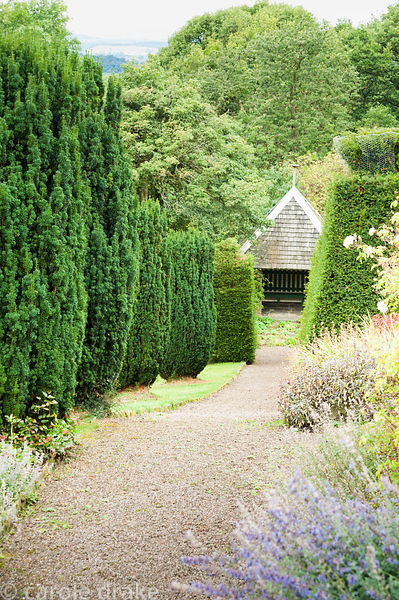 Path leading down towards summerhouse designed by Charles Voysey, past fastigiate yews. Perrycroft, Upper Colwall, Herefordsh...