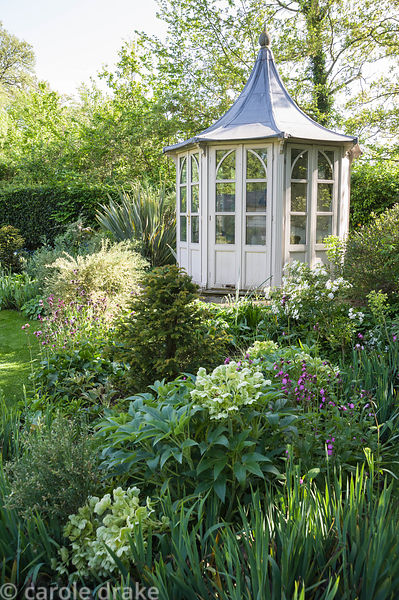 Summerhouse framed by borders planted with hellebores, yew, choisya and self seeded red campion.