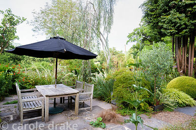 Dining area surrounded by foliage plants including acer, standard olives and eucalyptus at Five Oaks Cottage in July