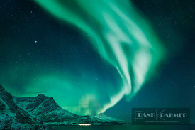 Polar light (Aurora Borealis) near Grotfjord - Europe, Norway, Troms, Kvaloya, Tromvik - Grotfjord (Lapland) - digital