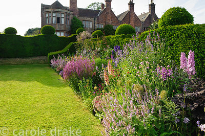 The amethyst border includes Digitalis 'Illumination Pink', salvias, veronica and Delphinium 'Sweetheart'. Felley Priory, Und...
