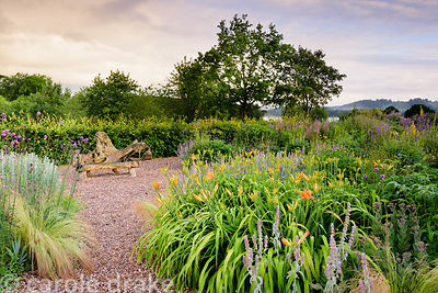 Gravel garden planted with Verbena bonariensis, day lilies and stachys at the Yeo Valley Organic Garden, Blagdon, Somerset in...