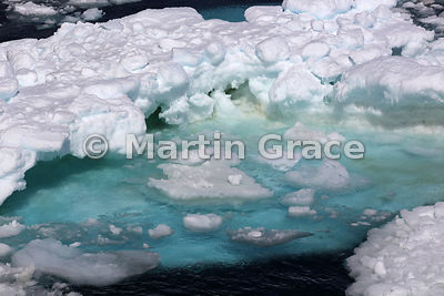 Blue-coloured sea ice, Hope Bay, Weddell Sea,  Antarctica