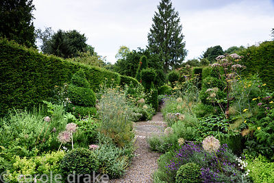 Herb gardenn with box topiary surrounded by lush planting including alliums, lavender, fennel, rosemary, sage and lemon balm,...