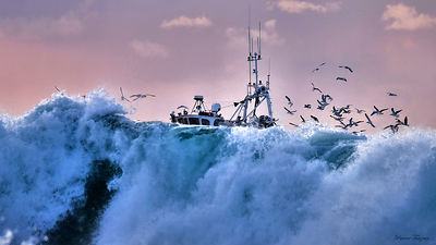 pictures of landscapes of fishing boats in France