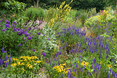 The Stone garden is naturalistic area to the south of the house where perennials are encouraged to self seed into a thick mul...