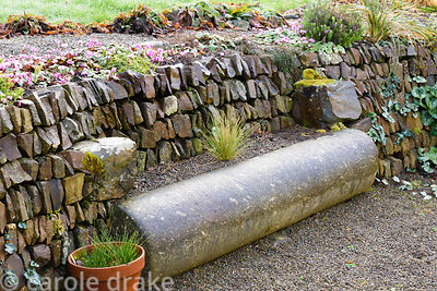 Stone cylinder turned seat set into a stone faced bank seeded with cyclamen at Higher Cherubeer, Devon