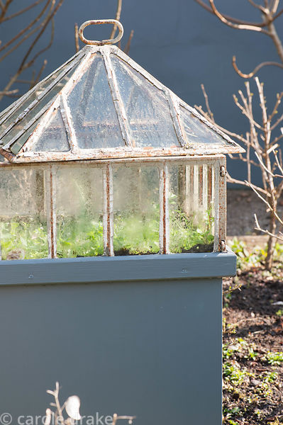A cast iron Victorian lantern cloche set on a pedestal in a formal kitchen garden surrounded by fruit bushes.