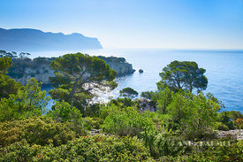 Fjord landscape in the Calanques - Europe, France, Provence-Alpes-Cote d'Azur, Bouches-du-Rhone, Cassis, Calanque de Port Pin...