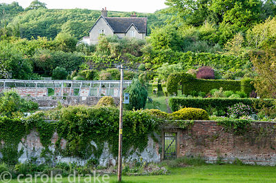 View into the walled garden from below showing the steep slope it occupies. Littlebredy Walled Gardens, Littlebredy, Dorset