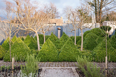 A formal kitchen garden surrounded by grey walls features four standard fig trees surrounded by clipped box pyramids at its c...