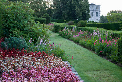 Densely planted begonias echo the pinks and reds of the penstemons along the Penstemon Terrace that runs along the croquet la...