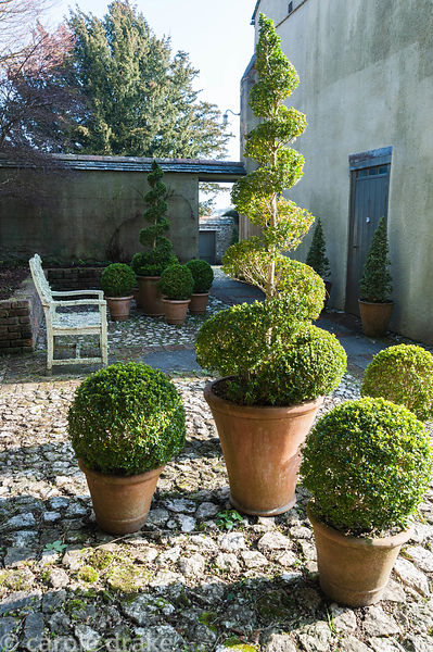 Rear courtyard paved with cobbles, brick and paving slabs and arranged with wooden bench and pots of clipped box topiary. Bos...